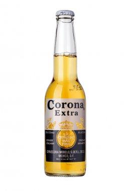 corona beer bottle