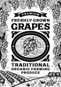 Fotografie Retro grapes poster black and white