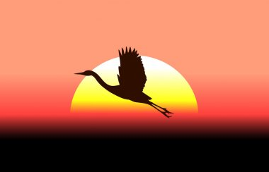 Flying stork on a background of a sunset
