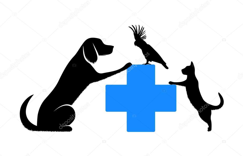 veterinary medicine Adjunct faculty, college of veterinary medicine, university of georgia, athens, georgia barbara j fougère all natural vet care, sydney, australia.