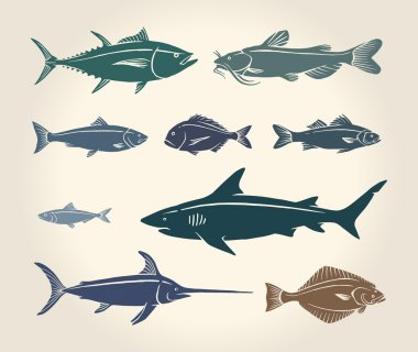 Vintage illustration of fish