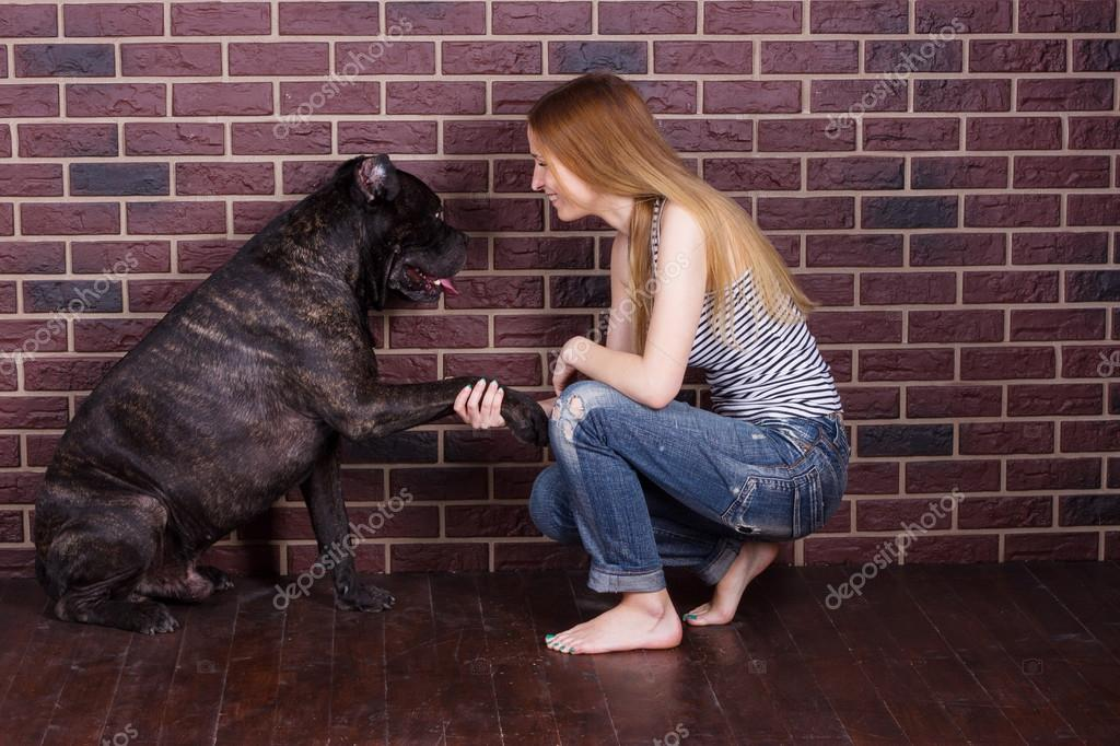Girl In Jeans And A T Shirt Cane Corso Dog Learns The