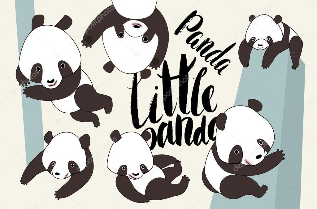 Dibujos Animados De Oso Panda Con