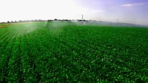 Zavlažovací systém na průmyslových farmě