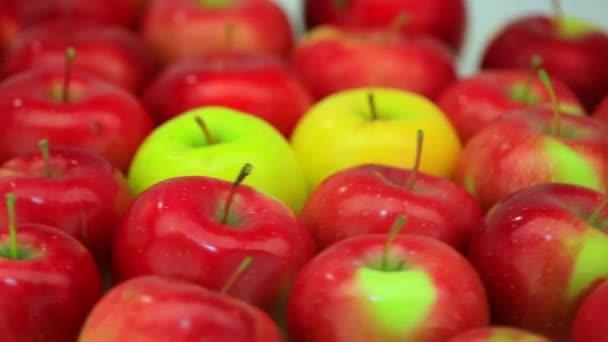 Ripe fresh apples