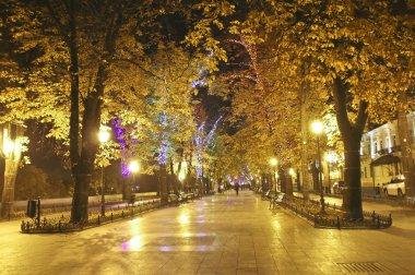 Primorsky Boulevard in Odessa at night.