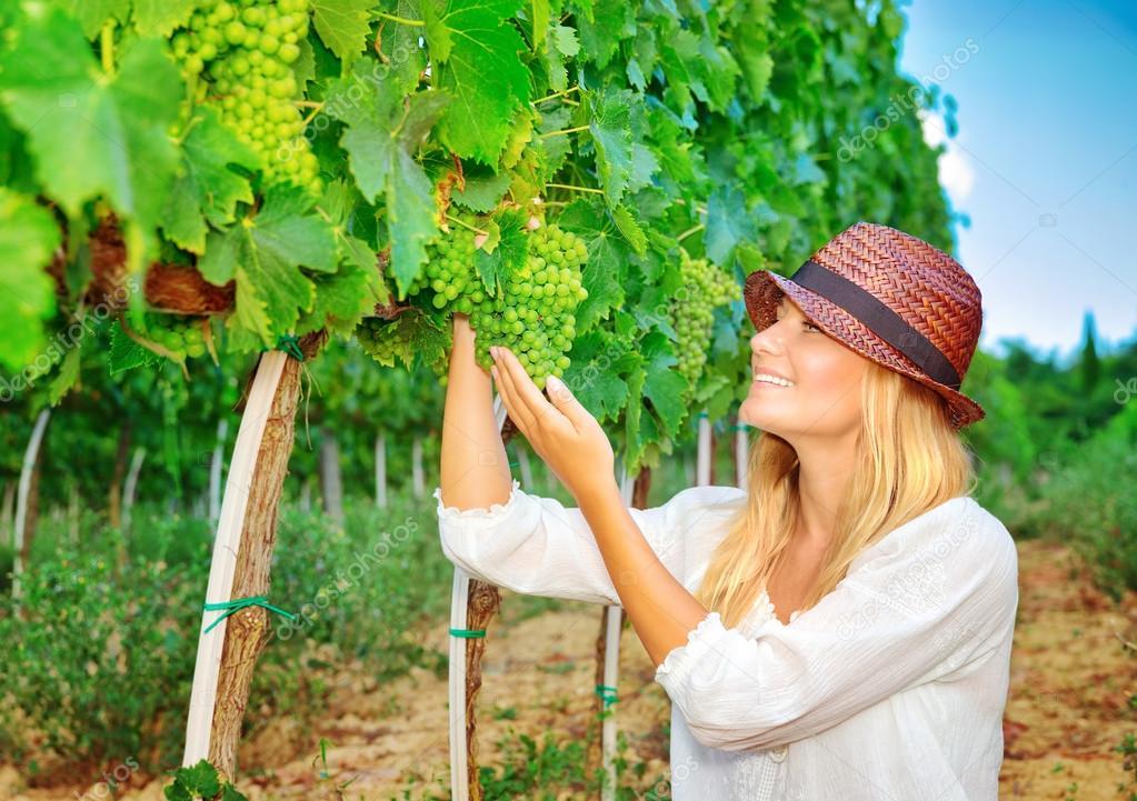 Woman plucks grapes