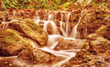 Beautiful waterfall in autumn park