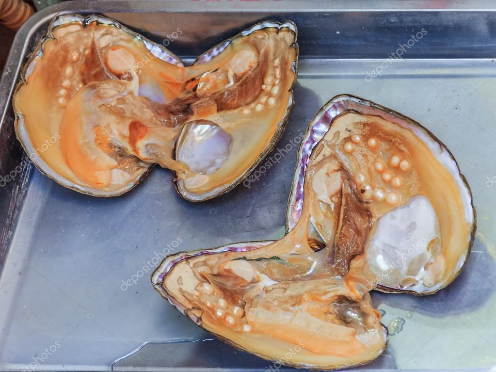Pearl oyster shell with pearls inside