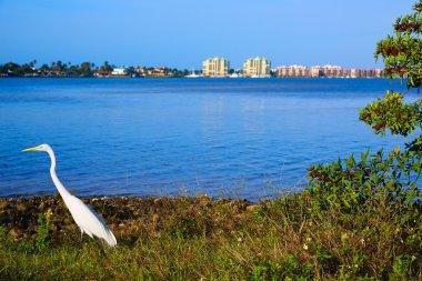 Naples Florida Marco Island view Florida US