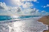 Singer Island beach v Palm Beach Florida nás