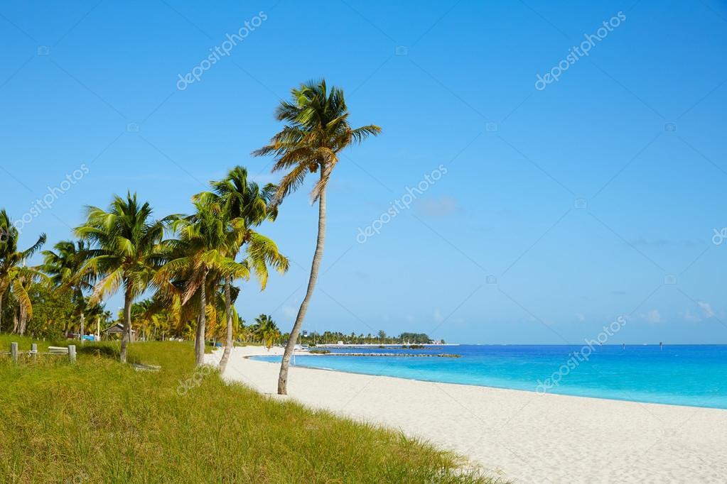 Key West Florida Smathers Beach Palm Trees Us Stock Photo