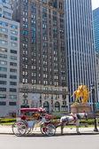 Central Park lovas sétakocsikázás a New York-i