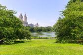 Fotografie Central Park jezero Manhattan v New Yorku