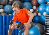 dumbbell concentrated biceps curl  man fitball