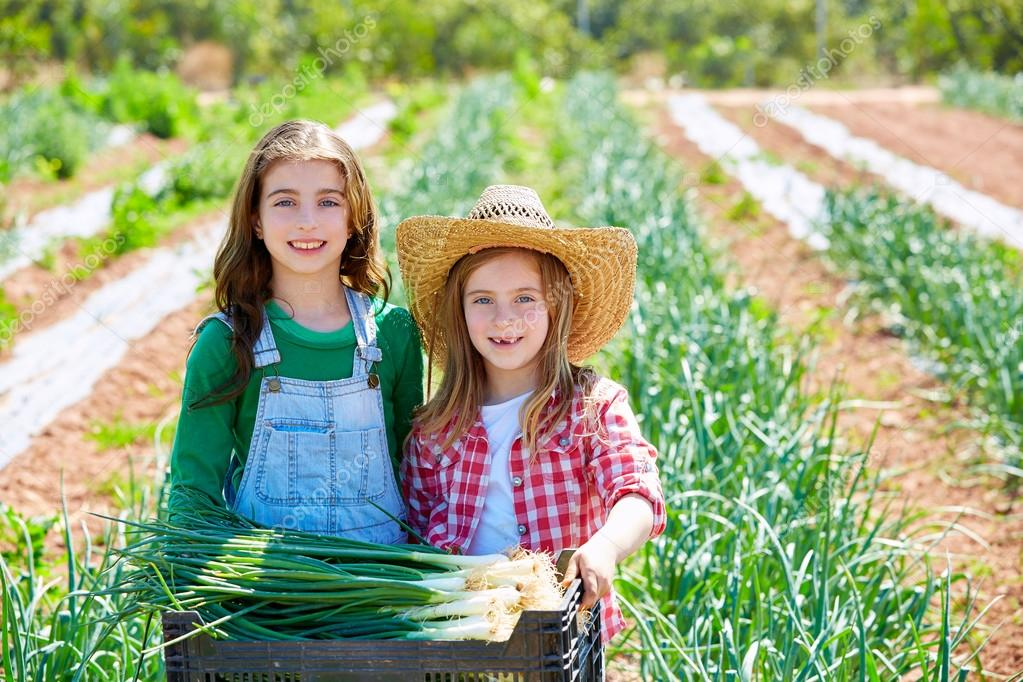 Litte kid farmer girls in onion harvest orchard