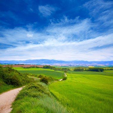 The way of Saint James track to Alto del Perdon