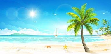 Tropical beach. Vector