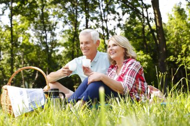 Senior couple on Picnic in the forest