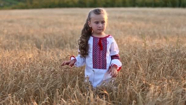malá holčička chodí na obilné pole