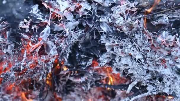 hořící oheň a kouř