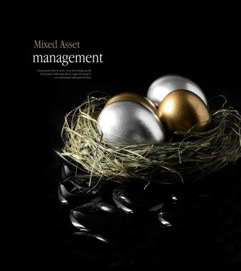 Mixed Asset Management