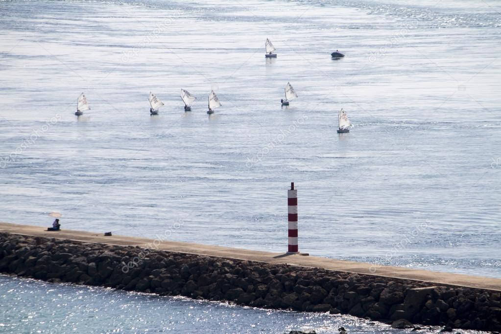 Bunch of small sailboats on the ocean