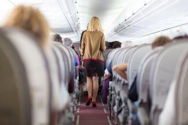 Stewardess on the airplane.