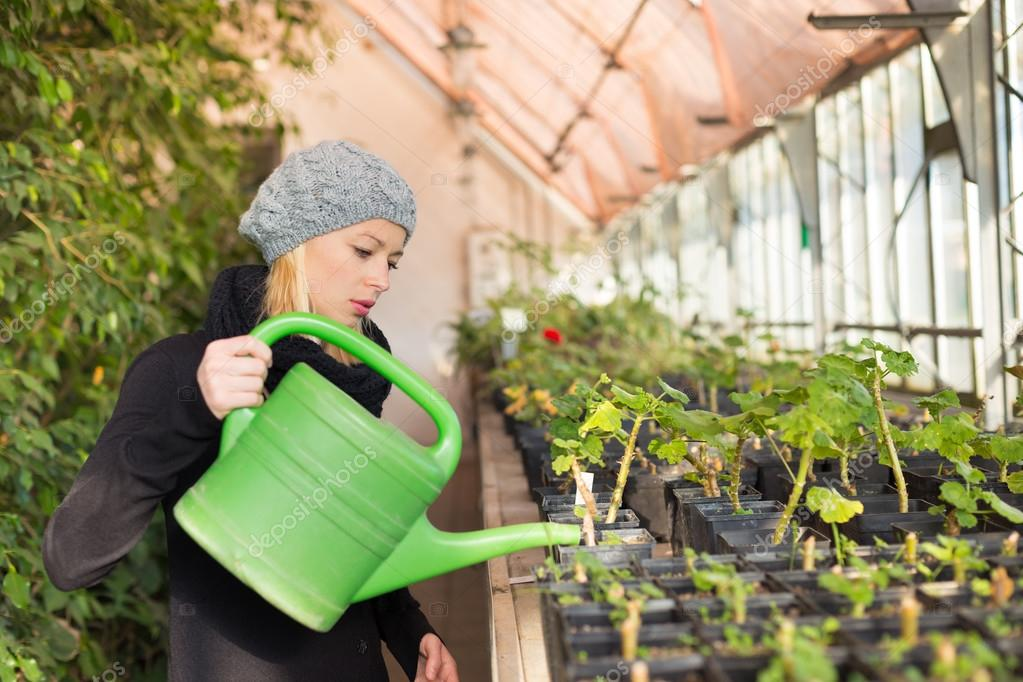 my experience in working for mischels greenhouse