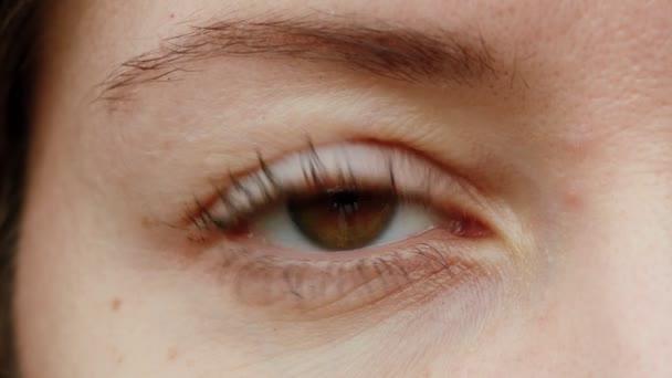 Detailní záběr hnědého oka. Mladá žena otevírá a zavírá své krásné oko