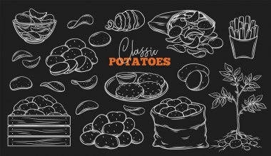 Potato products outline icons set on blackboard. Engraved drawn white on black chips, pancakes, french fries, whole root potatoes for farm market and shop design. Vector illustration. icon