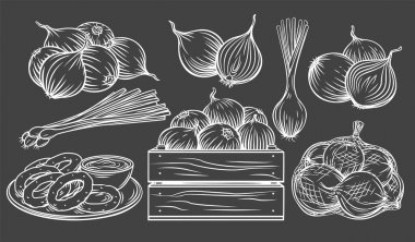 Onion outline drawn monochrome icon set on blackboard. White on black Pile of onion bulbs, packed in net bag, in wooden crate, bunch of fresh green onions and rings. Vector illustration. icon