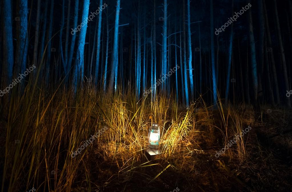 forest lamp official wiki cinders beast tf feed thorns d the etwilight of