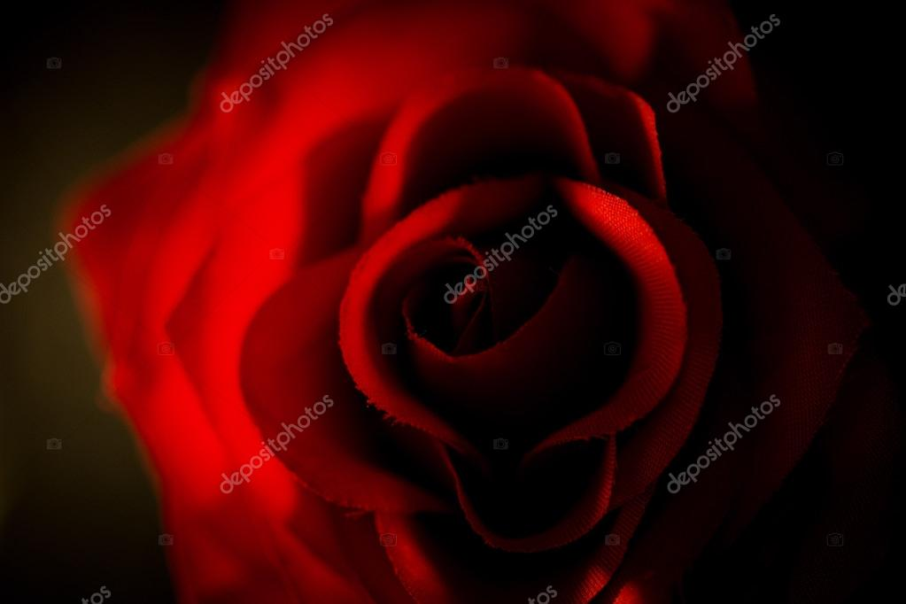 Closeup of artificial red rose shot against black background