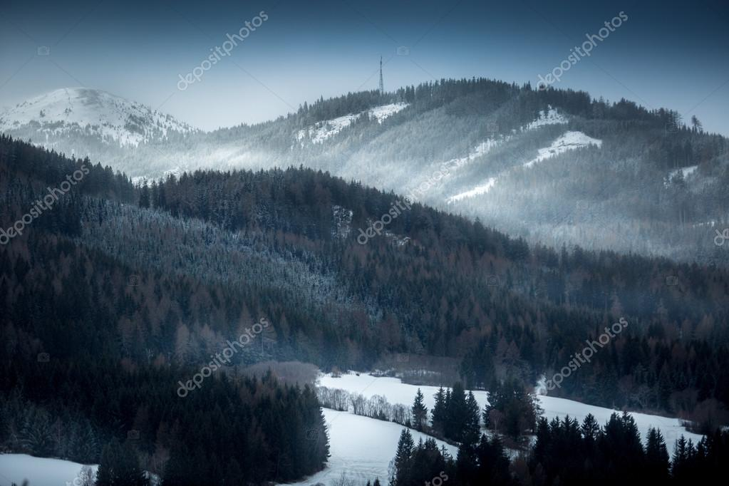landscape of high mountains covered with snowy forest at evening