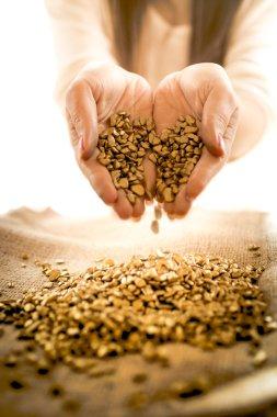 woman holding golden heap in hands