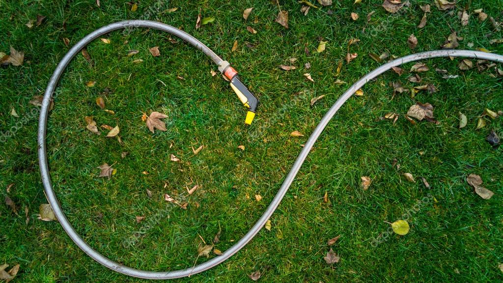 garden hose lying on grass covered with leaves