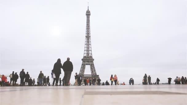 PARIS / FRANCE - 01 15 2020: Eiffel Tower, view from Trocadero terrace in Paris, France.