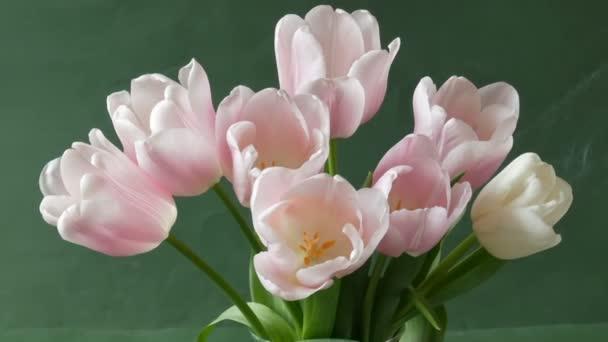 kytice růžových tulipánů květiny a stohu knih na zeleném pozadí. Koncepční den učitelů.