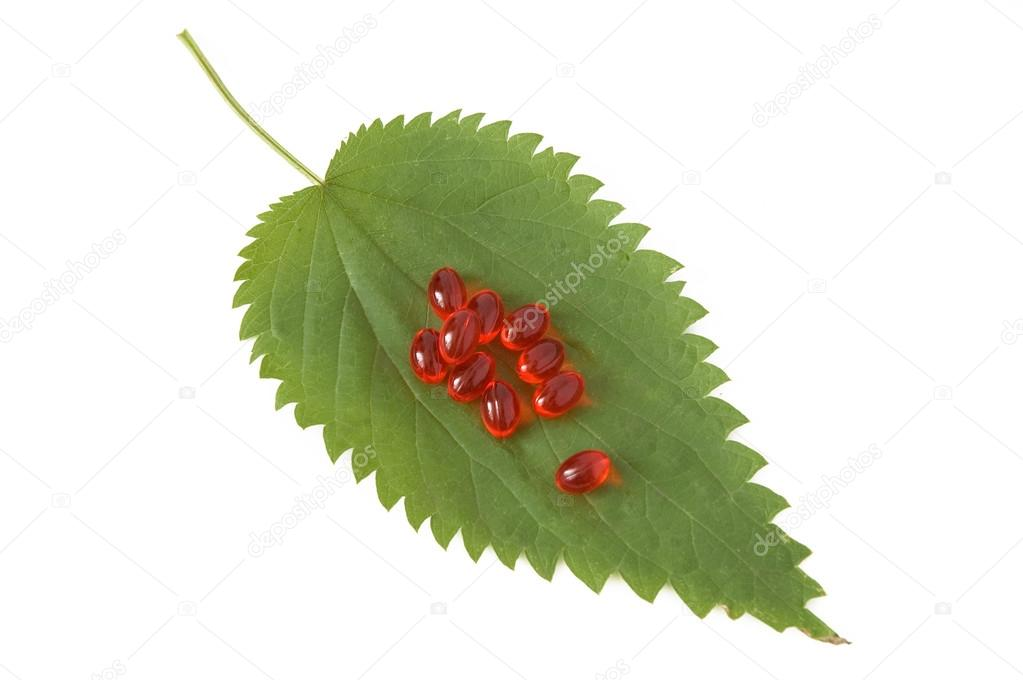 Fresh green leaf with red medicine isolated on white