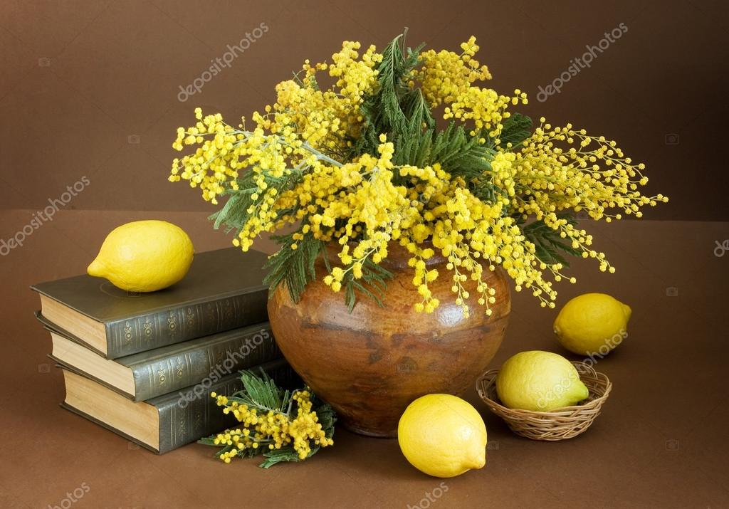 Still life with mimosa flowers bunch, antique books pile and lemons on artistic background