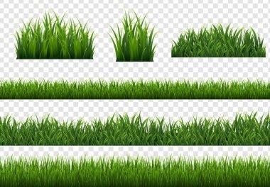 """Картина, постер, плакат, фотообои """"зеленый трава изолированный прозрачный фон"""", артикул 461905250"""