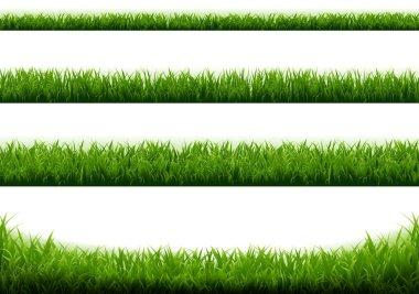 "Картина, постер, плакат, фотообои ""зеленая граница травы с белым фоном"", артикул 461906482"