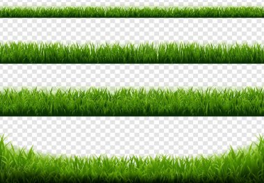 "Картина, постер, плакат, фотообои ""зеленая граница травы с прозрачным фоном"", артикул 461907154"