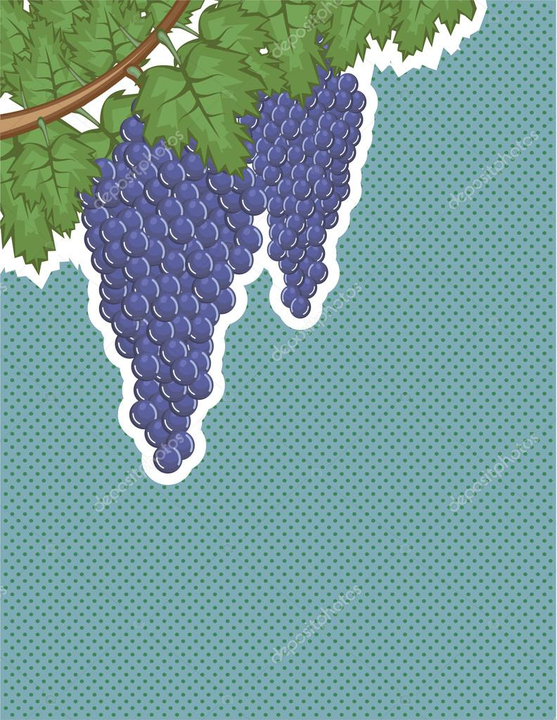 Grapes on a vine Vector Background pop art