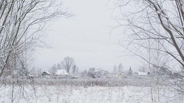 Zimní zasněžená krajina. Pohled na venkovskou oblast. Střední Evropa Běloruská příroda