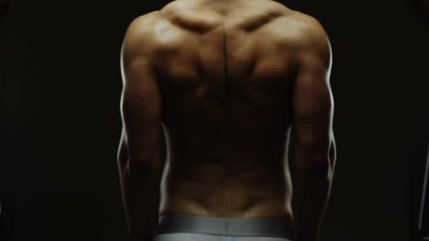 Pracovní svaly