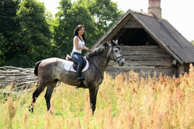 Portrait of beautiful woman on horse near the barn