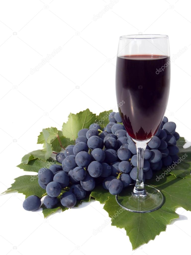 Cluster of blue grapes and glass of red wine on a white background, macro (still life).