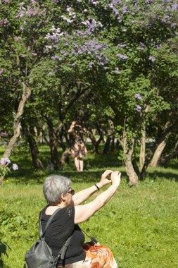 Moscow, Lilac garden